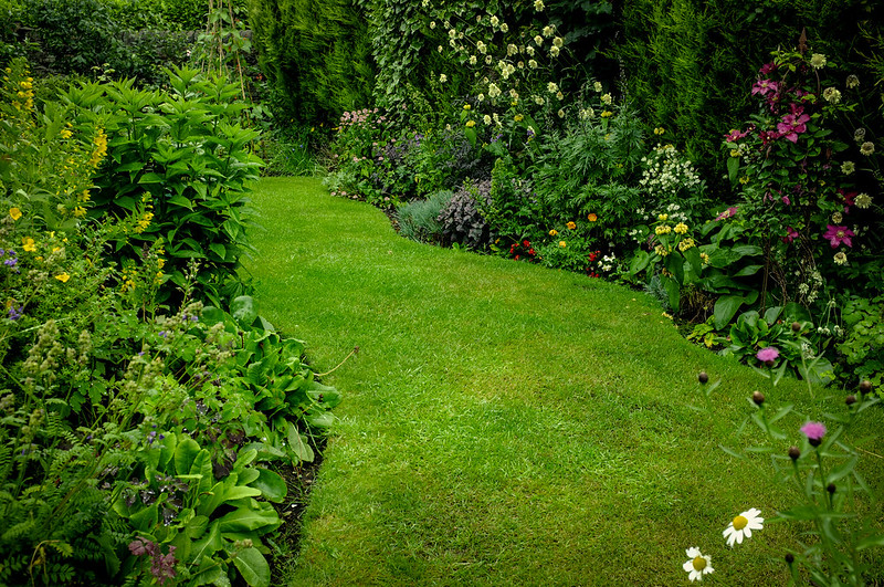 Professional gardening services: all works carried out by an expert tradesman.